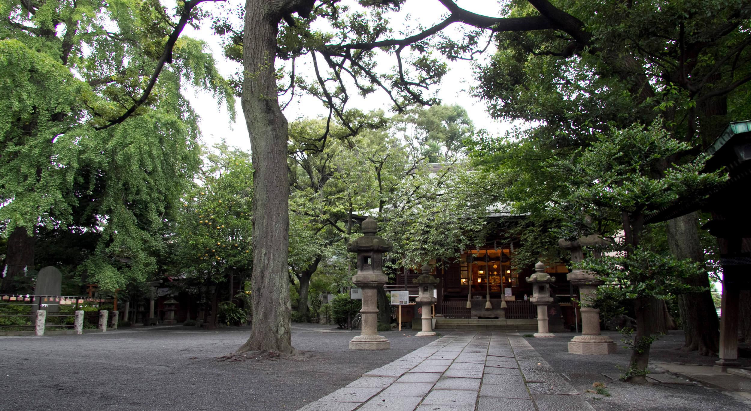 東京都北区で安産・厄除・お宮参りの祈願・お参りをするなら七社神社へ