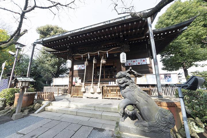 hatumiya